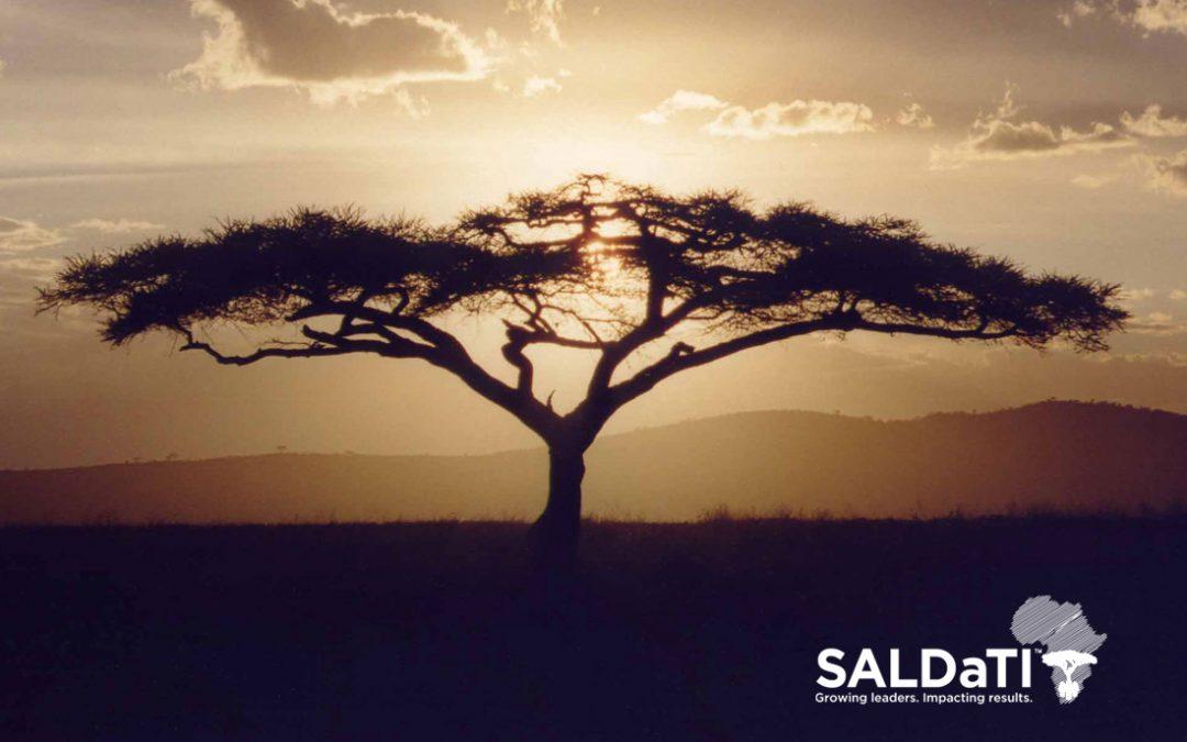 Welcome to SALDaTI